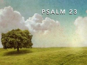 psalm 23.001