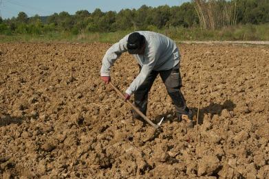 farmer-1367104_960_720.jpg